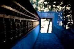Prayer Bells at Alchi (Aayush Iyer) Tags: deleteme5 deleteme8 deleteme2 deleteme3 deleteme4 deleteme6 deleteme9 deleteme7 saveme deleteme10 lada ladakh ladakhaayush