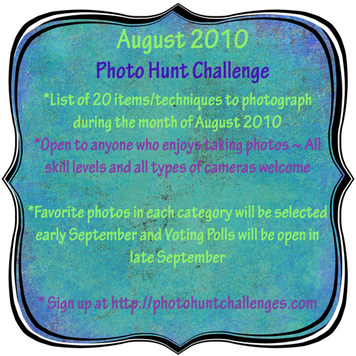 august2010-photohunt-badge