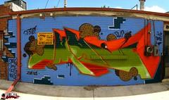 Omni Cookies - 2010-06-06 at 01-56-55 (Seetwist) Tags: autostitch panorama streetart art graffiti mural colorado paint grafitti stitch grafiti pano denver graffitti local graff piece aerosol stp 303 ptgui 720 denvergraffiti seetwist denverstreetart seetwistproductions