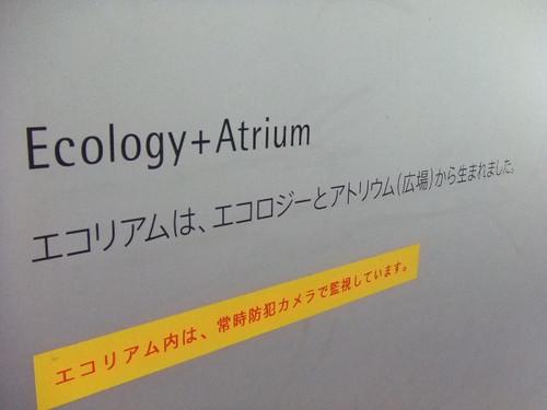 広島市 中工場 見学 画像 13