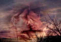 Redimir los contrarios en una sola eternidad... (conejo721*) Tags: argentina amor cielo palabras mardelplata ramas poesa poema hombreymujer photographydigitalart conejo721