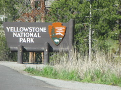4866871536 43029aeb41 m Yellowstone: Exploring a Giant Park in One Day!
