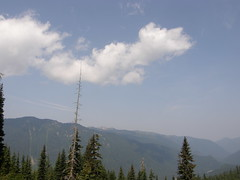 Views from avalanche area on Crystal Peak trail.