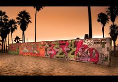 Venice beach, arts wall at sundown, Los Angeles, California (Ianmoran1970) Tags: california sunset tree art beach wall evening la losangeles sand paint grafiti palm artwall ianmoran ianmoran1970