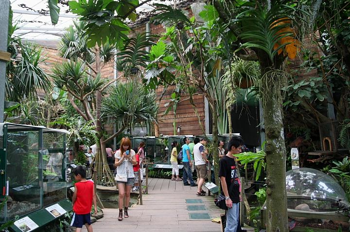 綠世界生態農場0050