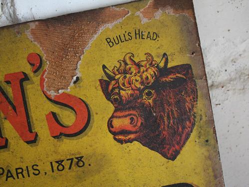 Colman's mustard bull
