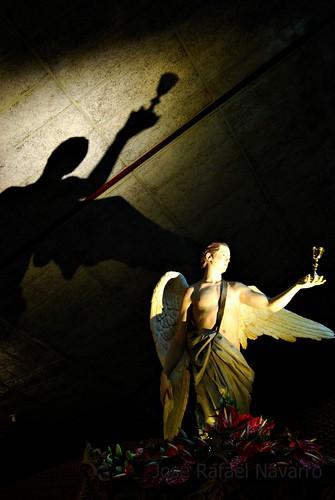 La Sombra del Ángel