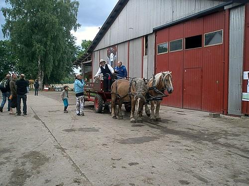 Hästskjuts