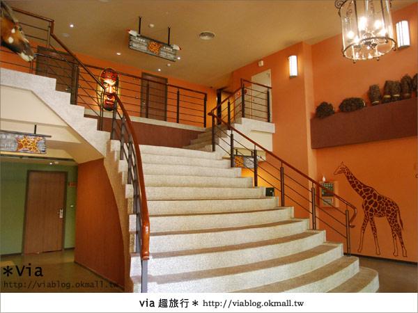 【新竹住宿】來去和動物住一晚~關西六福莊生態渡假旅館24