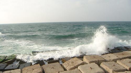 صور من مدينة الاسكندرية هذا الصيف