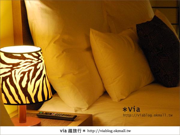 【新竹住宿】來去和動物住一晚~關西六福莊生態渡假旅館48