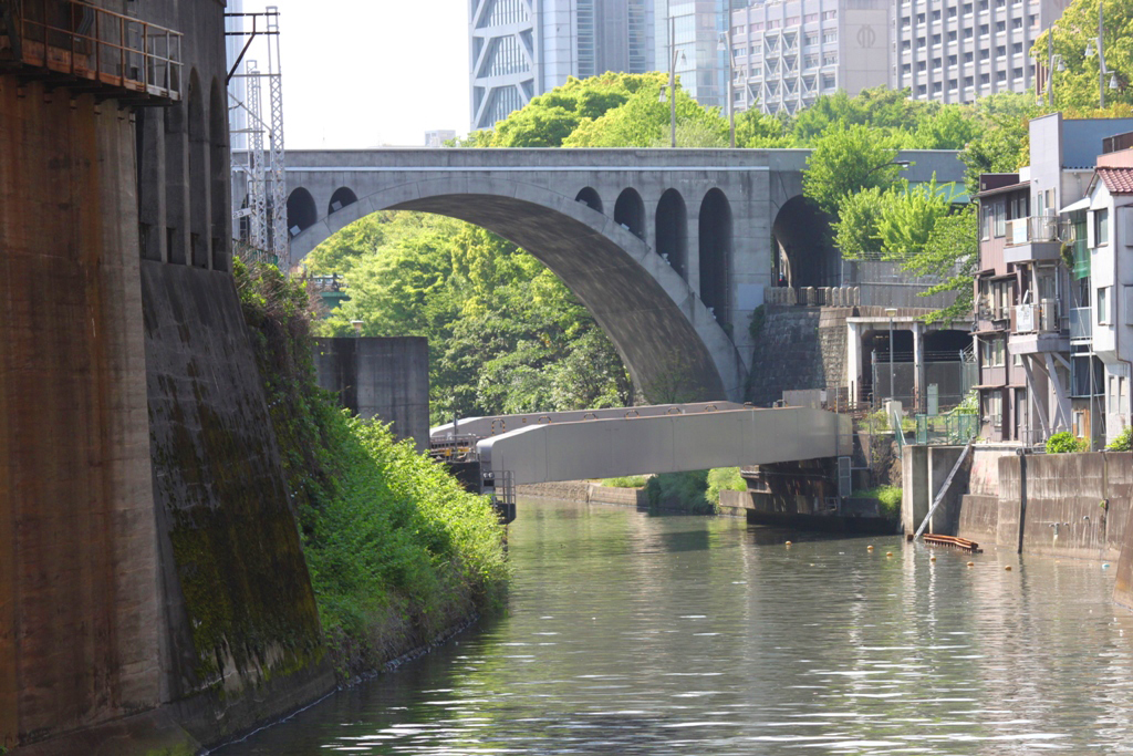 The art of the walk for gastronome in Kanda (50)