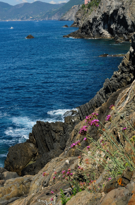 The Rugged Coastline