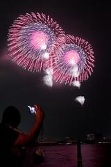 第23回東京湾大華火祭 八重芯菊先変化光露