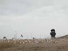 Gran Canaria (ruben.acosta) Tags: cloud storm grancanaria ojo highway farola desert escultura autopista nubes tormenta desierto gaviota seabird rubenacosta
