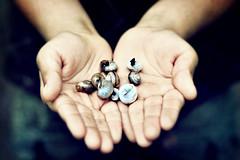 SAIF (irfan cheema...) Tags: boy shells texture garden hands son snails saif irfancheema
