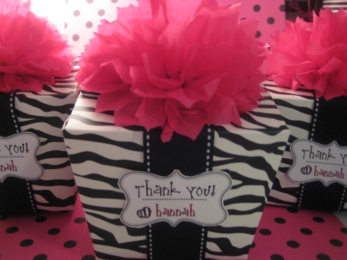 Kami Buchanan Custom Designs Zebra Print Slumber Party