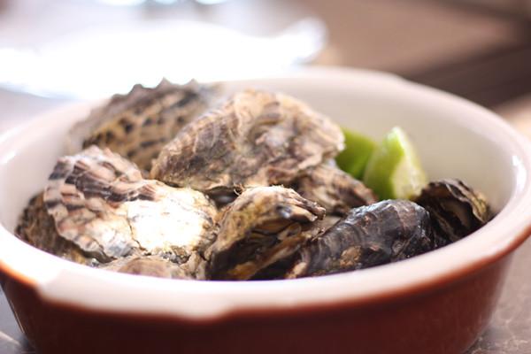 Oysters - Santo Antonio de Lisboa