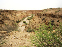 9b. Gorges and rough terrain outside Berbera