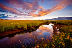 Wet Mountain Valley (Dan Ballard Photography) Tags: mountain wet grass river landscape photography colorado gallery best valley stunning prints rockymountains portfolio pick westcliffe outdoorphotographer danballard