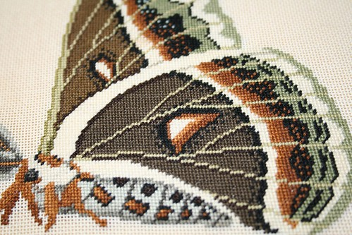 detail of thrifted butterfly cross stitch