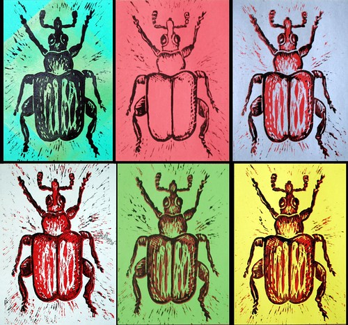 Variations on a theme of weevil