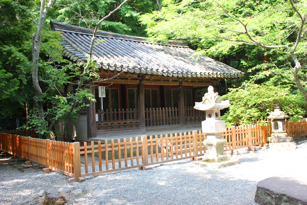 Hydrangeas - Exploring Hase, Kamakura part2 (13)