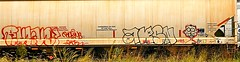 Rukus - Arsn (mightyquinninwky) Tags: railroad overgrown face yard train graffiti weeds head character tag graf tracks railway tags tagged railcar rails shana shoulders graff graphiti hopper freight hollow trainyard hollows trainart rollingstock rukus freightyard fr8 railart karne spraypaintart freightcar movingart arsn vbk grainhopper freightart csxtrainyard paintedhopper howellfreightyard taggedhopper paintedrailcar taggedrailcar 11223344556677 carfireonflickr charactersformyspacestation