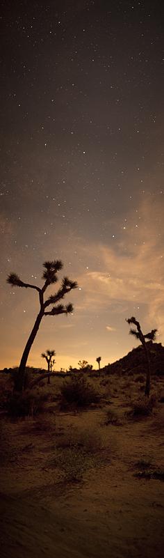 Olivier Pojzman, Joshua Tree and Stars