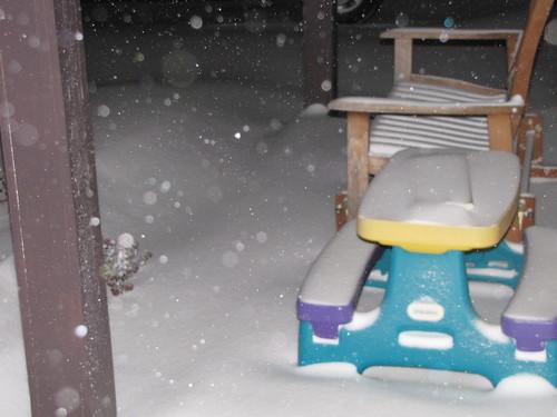 SnowstormJan11 001