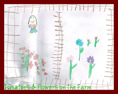 Petal Rose garden Feb 2011