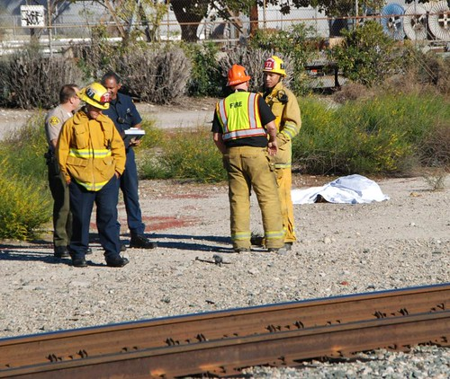 Man & Horse Fatally Injured by Train