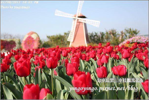 台中后里_中社光觀花市20110130_I6166