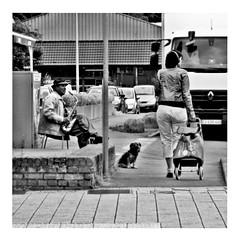 use hearing protection (japanese forms) Tags: ©japaneseforms2017 ボケ ボケ味 モノクロ 日本フォーム 黒と白 bw blackwhite blackandwhite blancoynegro bokeh candid headphones hoofdtelefoons kopfhörer monochrome random schwarzweis square squareformat strasenfotografie straatfotografie streetphotography vlaanderen zwartwit
