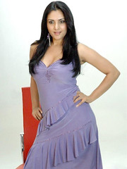 Indian Actress Ramya Hot Sexy Images Set-2 (33)