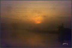 Bitesize Slices Of Sunrise. Part 2. (Picture post.) Tags: landscape nature green sunrise mist water reflections summertime ducks sunburst paysage arbre brume trees