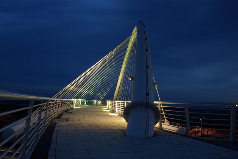 20100626豎琴橋夜景