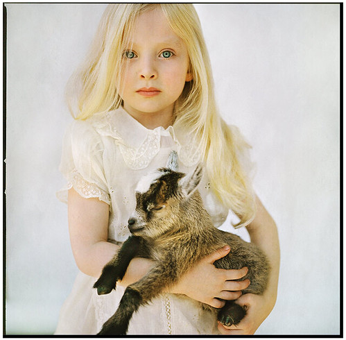 little girl with goat, Picture 9