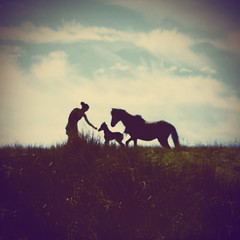 Blurred Horse Person Silhouette (Matt(ikus)) Tags: wild horse blur nature animal silhouette square person pin hole natural young blurred pinhole explore pony frontpage offspring foal