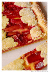 Rhubarb and Lemon Curd Tart© by Haalo