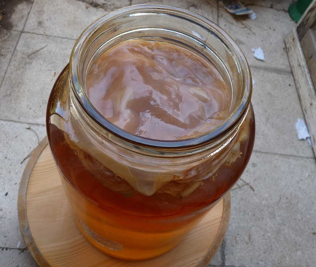 Kombucha Tea-2 by zeevveez, on Flickr