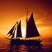 Schooner Sunset Sail