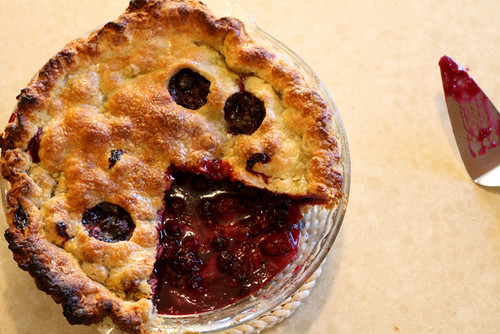 Berry Cobbler Pie Bars Blueberry Blackberry Pie Creamy Pumpkin Pie ...