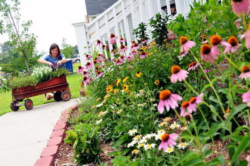 Christy's garden
