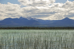 Beaverdam Lake (showbizinbc) Tags: lake bc britishcolumbia canyon fraserriver beaverdam cariboo chilcotin marblemountains cowboycountry marblerange fraserriverbasin