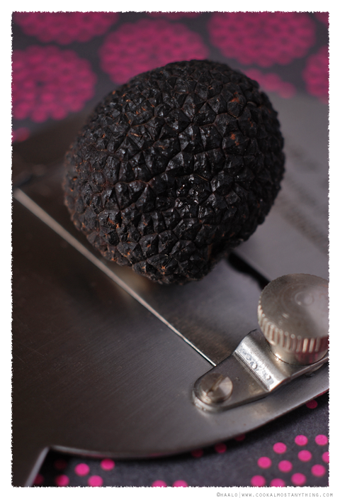 black truffle© by Haalo