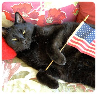 Flag-Jack