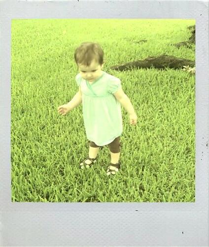 Polaroid Violet