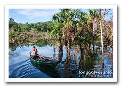 Jamaraquá, Amazon, Brazil