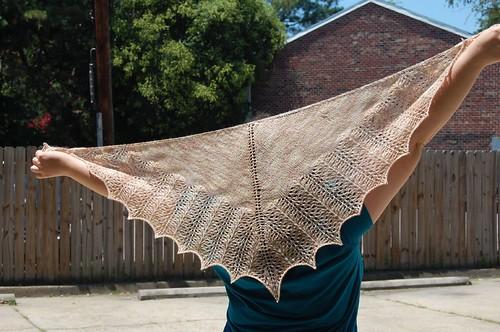 shawl's wingspan